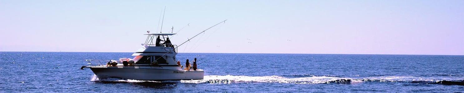 Sport Fish Boat [99242411]
