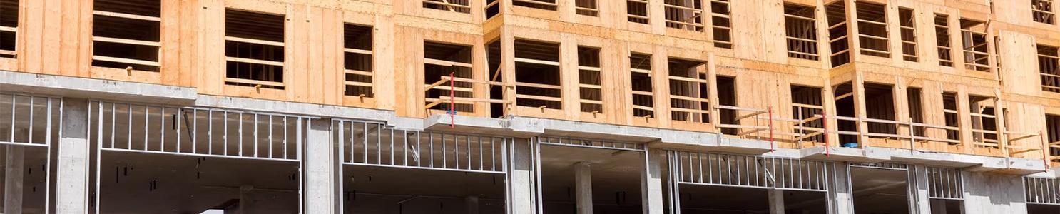 Housing Construction [542284716]